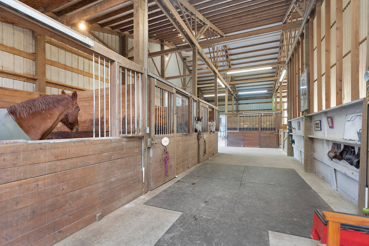 Five stall show barn with 12' wide concrete aisle way