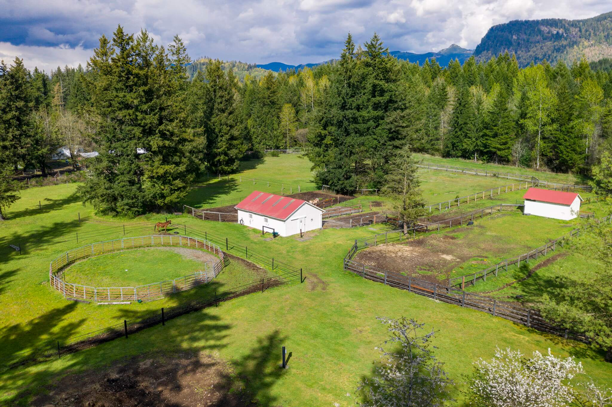 Seven separate fully fenced pastures and a 60' round pen